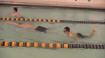 special olympics swim meet